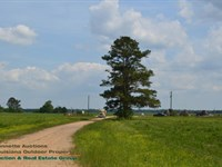 Sugar Cane Plantation Auction : Vacherie : Saint James Parish : Louisiana