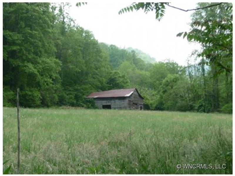 Mountain Farm W/ Chestnut Barn : Marshall : Madison County : North Carolina