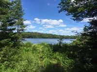 On Cook Pond - Cranberry Lake Area : Clifton : Saint Lawrence County : New York