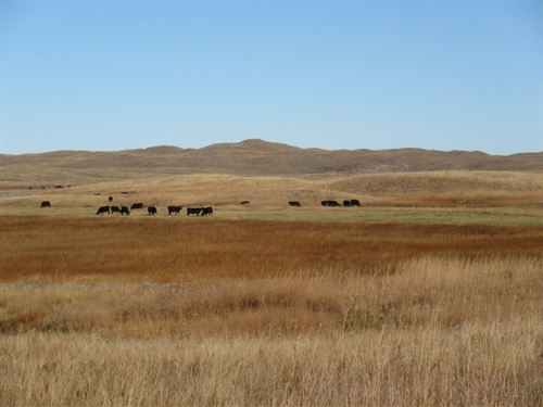 Maurice S. Peterson Ranch : Alliance : Garden County : Nebraska