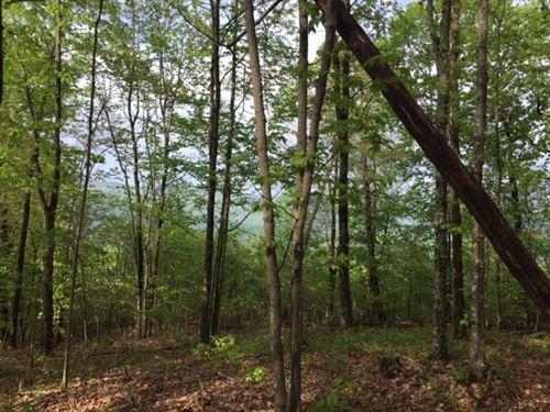 5.53+/- Acs Near Sewanee University : Sewanee : Marion County : Tennessee
