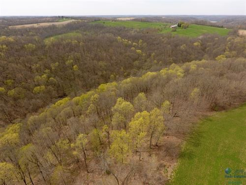 Exquisite Farmhouse W/Hunting Land : Blue River : Richland County : Wisconsin