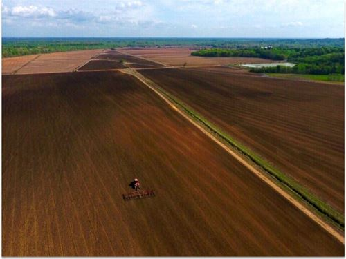 1169 Acres In Oktibbeha County (Wal : Starkville : Oktibbeha County : Mississippi
