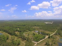 104 Acres Near Jacksonville Airport : Jacksonville : Duval County : Florida