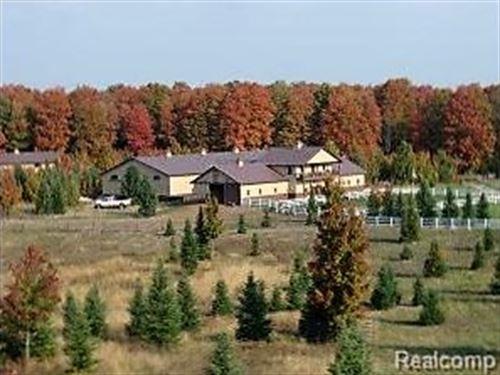 136 Acres In The Heart Of Michigan : Vanderbilt : Otsego County : Michigan