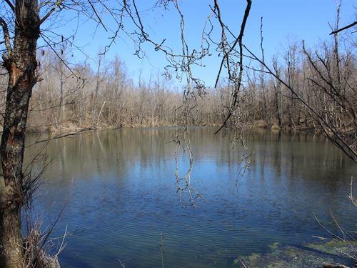 Sulpher Springs Rd - 80 Acres : New Lexington : Perry County : Ohio
