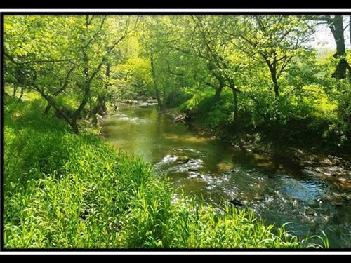 16 Acres At Shade River Retreat : Long Bottom : Meigs County : Ohio