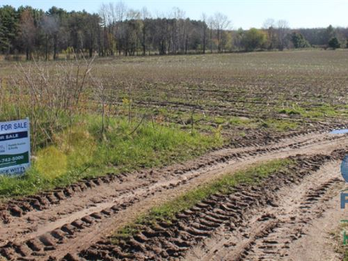 Tillable Farm Land With Build Sites : Neillsville : Clark County : Wisconsin