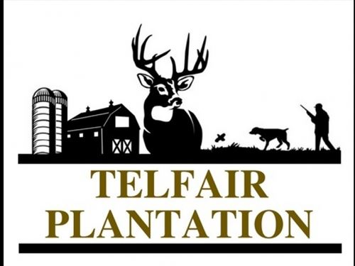 Telfair Plantation - New Pricing . : Warrenton : Warren County : Georgia