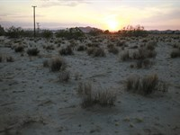 5 Acres Power And Paved Road Access : Twentynine Palms : San Bernardino County : California