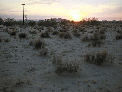 5 Acres Power And Paved Road Access : Twentynine Palms : San Bernardino County : California
