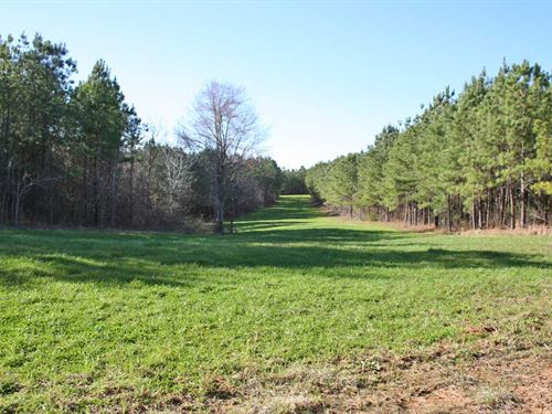 Tri-Country Tract : Thomasville : Wilcox County : Alabama