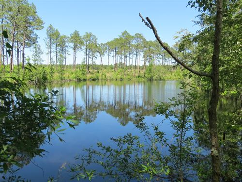 Perfect Recreational Property : Eastman : Dodge County : Georgia