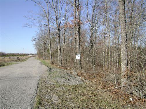 Next To Fall Creek Falls : Spencer : Van Buren County : Tennessee