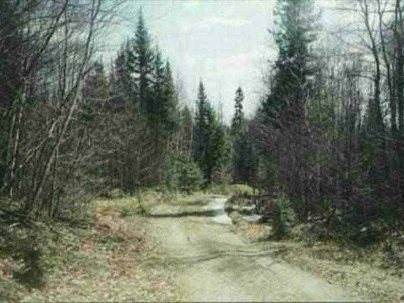 40 acres off ned lake rd 1101276 farm for sale