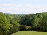 James Weatherly Estate 39 Acres : Moneta : Bedford City County : Virginia
