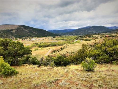 Bear Creek, Lot 114 : South Fork : Rio Grande County : Colorado