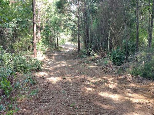 Zion Chapel 9 : Troy : Coffee County : Alabama