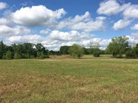 34 Acres Of Excellent Hunting : Banks : Pike County : Alabama
