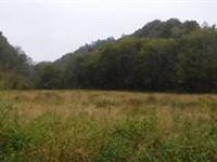 252 Acres Pastures And Wooded : Whitleyville : Jackson County : Tennessee