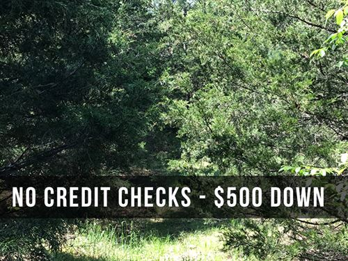 8 Acres Bordering National Forest : Birch Tree : Shannon County : Missouri