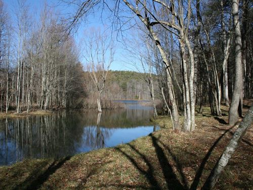 50.47 Acres Wooded With Lake View : Spencer : Van Buren County : Tennessee