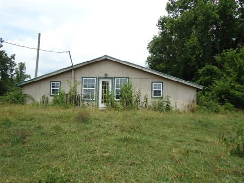 64.25 Acres & Cabin In Fentress Co. : Jamestown : Fentress County : Tennessee