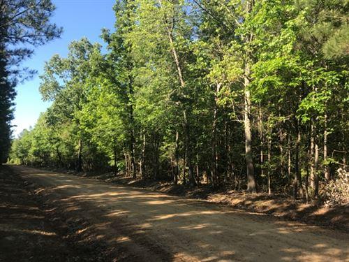 Land For Sale In Starkville, Ms : Starkville : Oktibbeha County : Mississippi