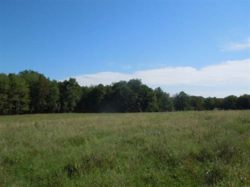 31.84 Pastures In Overton Co. : Livingston : Overton County : Tennessee