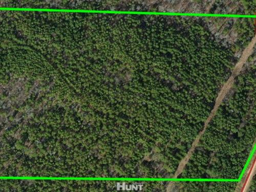 22 Acres Water Valley, Ms Near Oxfo : Water Valley : Yalobusha County : Mississippi