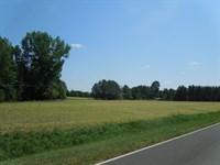 Marie & Arthur Noell Tract - 22 Ac : Louisburg : Franklin County : North Carolina