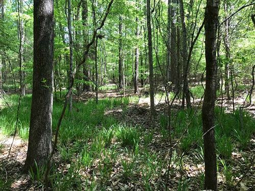 Great Small Hunting Property : Thomaston : Upson County : Georgia
