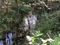 South Liberty Estate Tract : Liberty : Pickens County : South Carolina