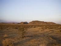 True Desert Paradise : Twentynine Palms : San Bernardino County : California