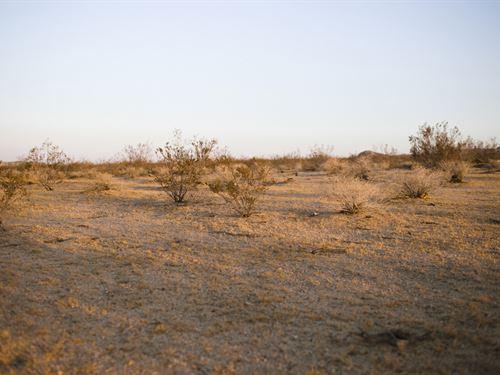 Low Down Payment On Desert Location : Twentynine Palms : San Bernardino County : California