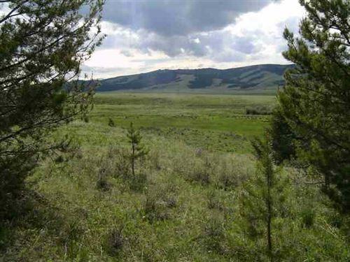 Arrowstone Tract 8 : Philipsburg : Granite County : Montana