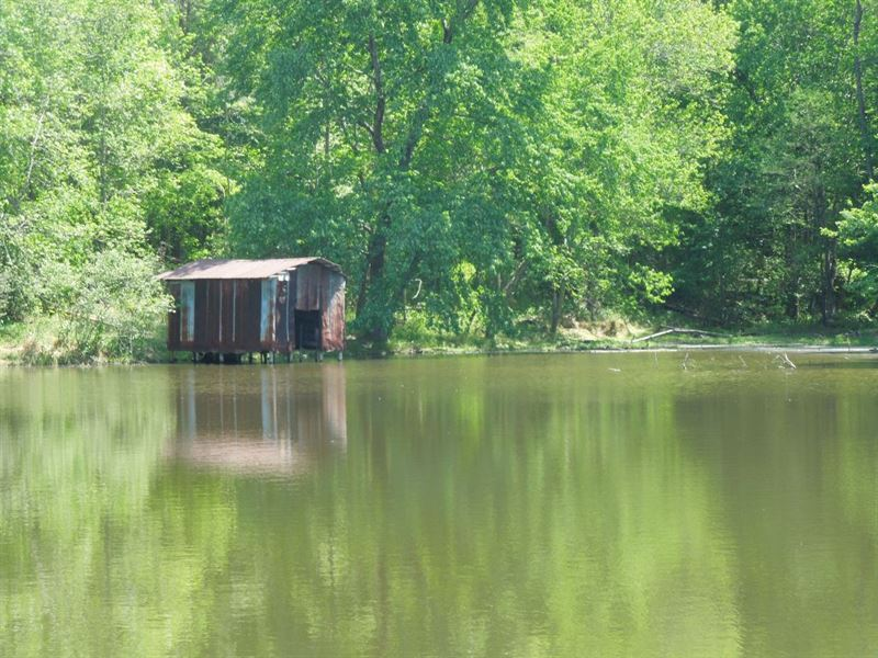 Marie & Arthur Noell Tract - 20 Ac : Louisburg : Franklin County : North Carolina