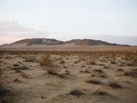 Don't Wait For This Deal To Be Gone : Twentynine Palms : San Bernardino County : California