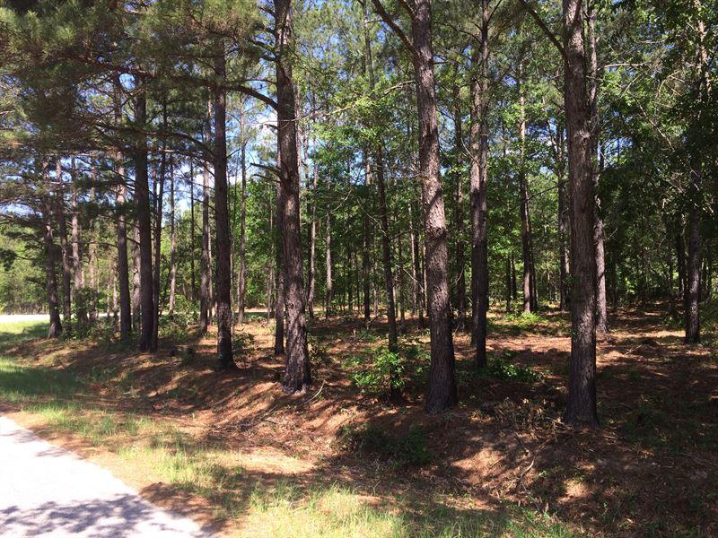 Awesome 75 Acre Hunting Property : Thomaston : Upson County : Georgia