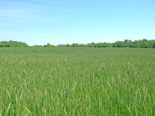 318 Acres Butler & Montgomery Co, : Germantown : Montgomery County : Ohio