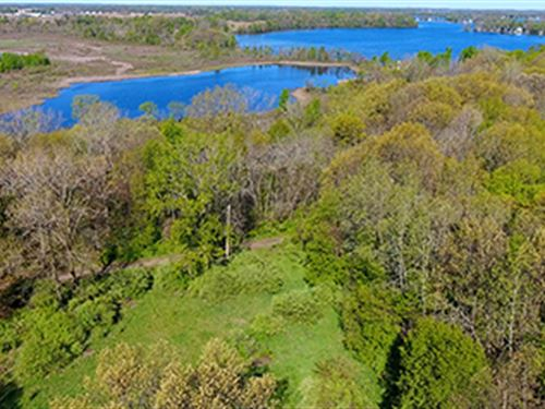 Real Estate Auction - 183+/- Acres : Coldwater : Branch County : Michigan