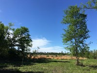 24.21 Acres Old Sign Road : Huntsville : Walker County : Texas