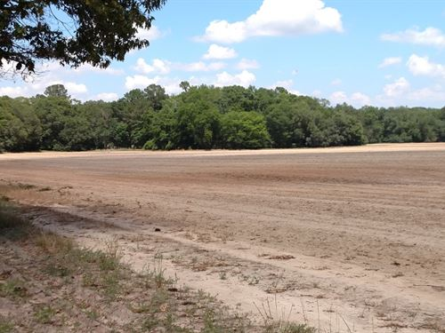 Swga Irrigated Farm--May Divide : Arlington : Early County : Georgia