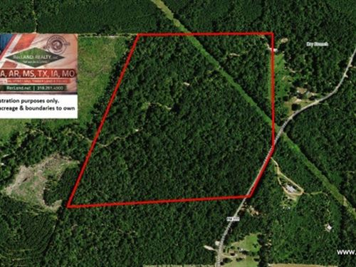 75 Ac Pretty Timberland Tract For : Jasper : Texas