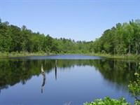 Wynn East Tract : Ridgeland : Jasper County : South Carolina