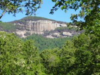 39.63 Acres Hwy 11 Scenic View Tabl : Pickens : Pickens County : South Carolina