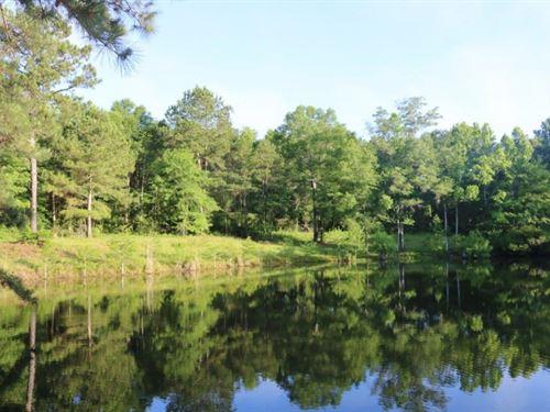 21 Acres In Jefferson Davis : Bassfield : Jefferson Davis County : Mississippi