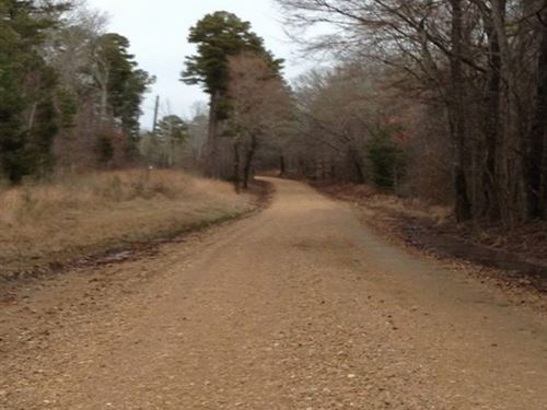 13.9 Acres Of Holmes County : Lexington : Holmes County : Mississippi