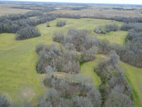 155 Acres Mixed Hardwood & Rowcrop : Poplar Grove : Phillips County : Arkansas