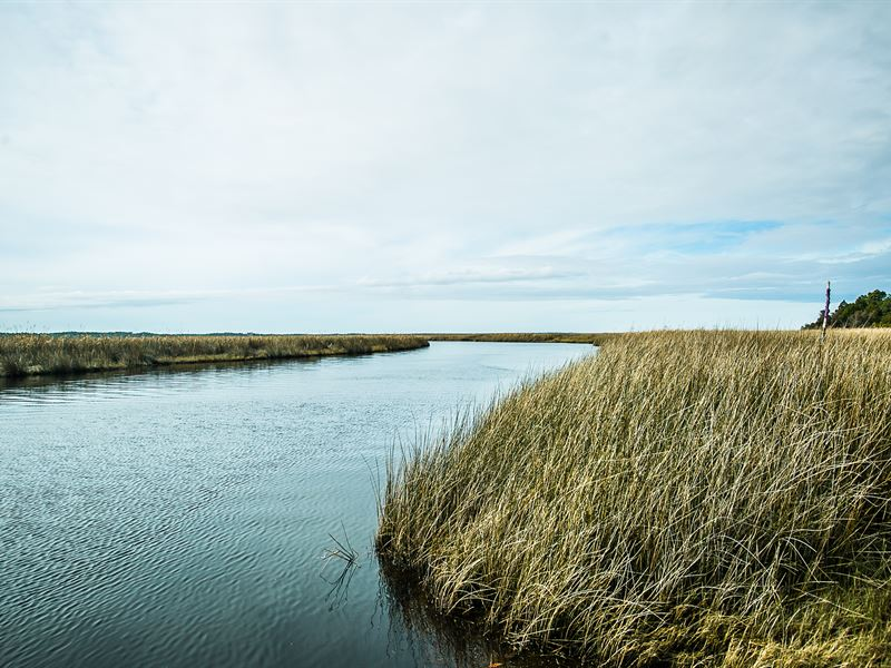 Coastal Waterfront Timber Develop : Atlantic : Carteret County : North Carolina